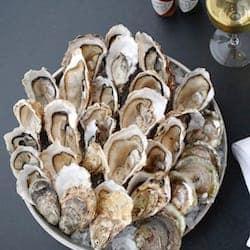 Oysters Richard Haward's