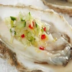 Oysters with Avocado & Red Wine Vinegar